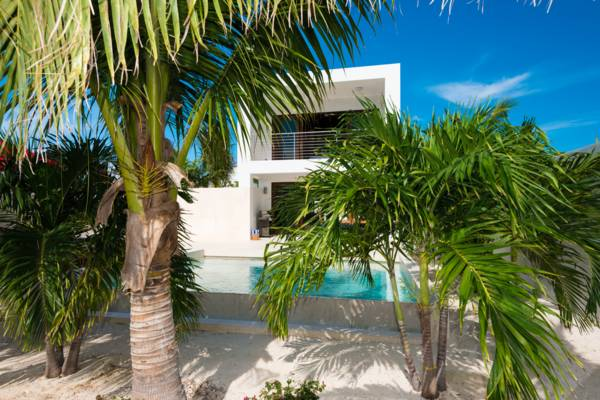 Private courtyard garden surrounding pool at Sugar Kube villa on Grace Bay